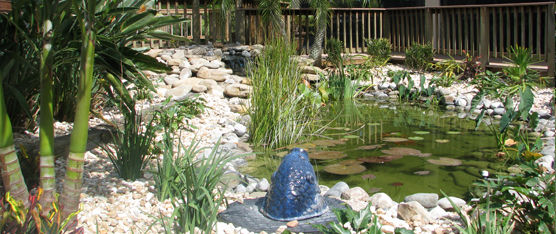 Lanscaping Ponds Melbourne